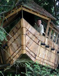 Boat tree house