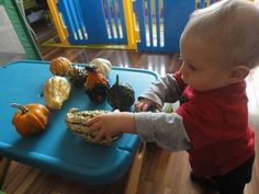 Actividades para bebes. {Learners in Bloom} Welcome to Baby School