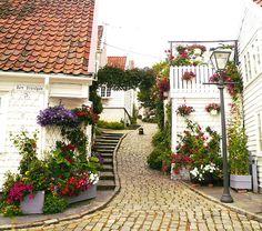Stavanger, Norway. What an idyllic little street!