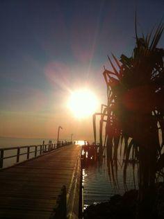 Pandanus sunshine by Shaun Beckett.  #kingfisherbay #fraserisland #thisisqueensland #seeaustralia #ecotourism www.kingfisherbay.com