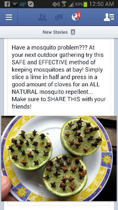 Mosquito repellent.