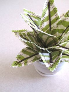 Homemade potted #plant