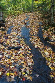 Fall colors in Lake Placid, Adirondacks, New York