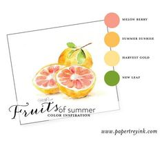 Fruits-of-Summer-2