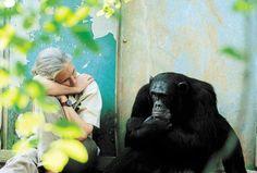 <3 Jane Goodall