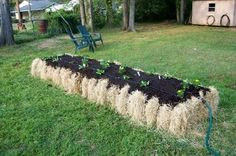 Here's a very simple technique for gardening in tight spots and in places with no/terrible soil (from the arctic circle to the desert to an asphalt jungle). It's also a great way to garden if you ...