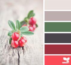 color palettes, design seeds, christmas colors, winter colors, color schemes, color pallettes, winter berri, color pallets, berries