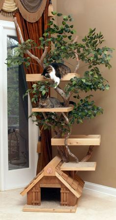 Cat tree - for real. This would look great in the house, much more decorative than the carpet towers sold at the pet centers, and the kitties seem to be enjoying it! Craft store tree, handyman platforms, totally do-able.