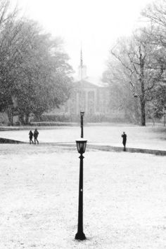 Snow in Chapel Hill.