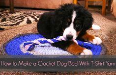<p>T-Shirt Yarn Dog Rug and Chew Toy Free Crochet Pattern</p>