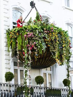 Now that's a hanging basket!!