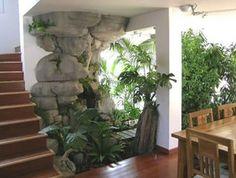 Plantas de interior en aspectos rusticos