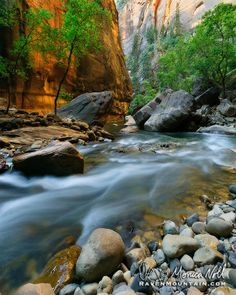 Zion National Park, Utah; photo by Raven Mountain Images on 500px
