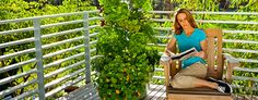 Tower Garden by Juice Plus! No dirt, no weeds, no watering, no wasted space. The hardest thing about this garden is it grows so fast you won't be able to eat enough to keep up with the growth. I guess we are going to have to share! organic gardening, juice plus, towergarden, vertic garden, farmers market, tower garden, rooftop patio, back porches, backyard