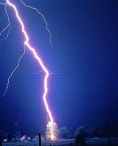 Natural Lightning Hitting a Tree
