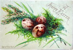 1880's Victorian Easter Card ~ speckled brown eggs