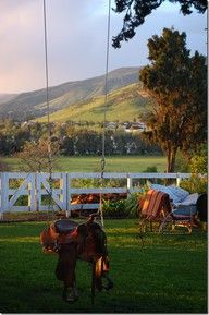 I want a saddle swing in my front yard