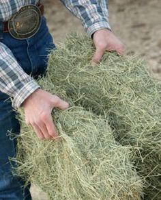 Managing hay shortages