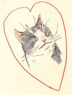 Pokey Love (Grumpy Cat's Brother)