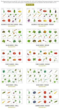 This site gives you suggested plots based on a 4x4 garden as well as tips and tricks. pretty sweet.