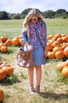Pumpkin Patch + Denim Dress