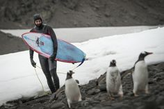 Antarctica Surfing