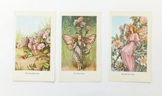 Three Cicely Mary Barker Prints of Flower Fairies, £11.50