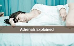 The Adrenals, Adrenal Fatigue and Remedies - Explained