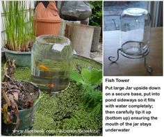 DIY fish tower for your outdoor pond. Cute addition to a water feature in the garden or yard. water gardens, towers, water features, mouth, koi ponds, glass, diy home, fish ponds, jars
