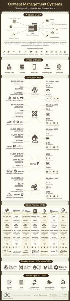 The Most Popular CMS for Your Business Needs #wordpress #wordpressthemes #wordpresstips