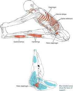 The great seal yoga pose