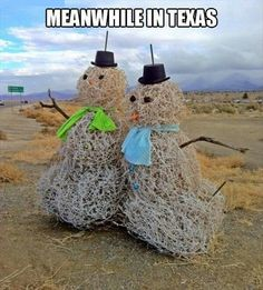 Meanwhile In Texas, Snowman, Click the link to view today's funniest pictures!