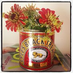 dragonfly - Zinnias and bronze fennel in the perfect tin #cutflowers