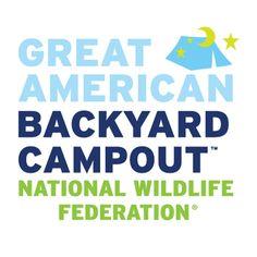 camping tips, family camping, backyard campout, american backyard, famili camp, introduc kid