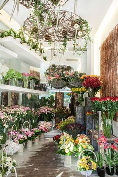 Ideas for flower shop on Pinterest