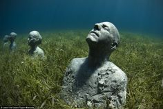 Life below the surface: 'The Anchors', a sculpture by Jason deCaires Taylor, sits in a bed of sea grass