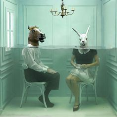 Surreal Photography by Lara Zankoul rabbit, underwater photos, surrealism art, lara zankoul, the zoo, photo manipulation, underwater photography, mask, photographi