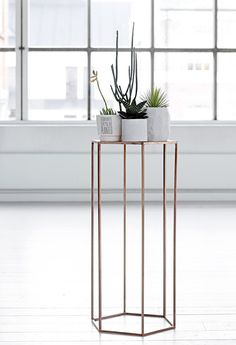 plant stand.