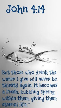 """John 4:14 But those who drink the water I give will never be thirsty again. It becomes a fresh, bubbling spring within them, giving them eternal life."""""""