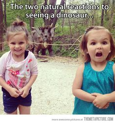 Two natural reactions…