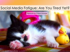 Social Media Fatigue: Are You Tired Yet? A Flipbook by Chloe. #film260 #queensu #queenscds
