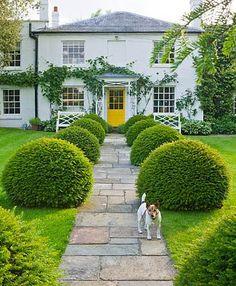 Oversized hedges, symmetry