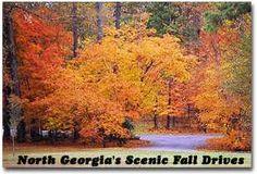 Georgia in the fall