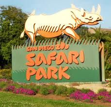Summer definitely has to include a trip to San Diego Zoo's Safari Park. #EpicSummerRun