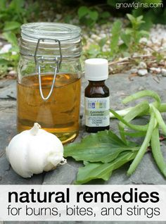 "Natural Remedies for Burns, Bites, and Stings | Gnowfglins: ""...burns, bites, and stings can stop that summer fun dead in its tracks."