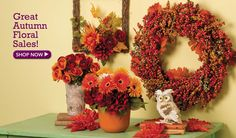 40% off Great Autumn Floral Sale.