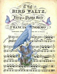 The Bird Waltz in Blue
