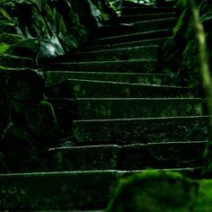 How to Make Steps in a Garden Walk in 5 Steps