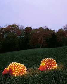Use big pumpkins for the porcupines' bodies, and attach the heads with toothpicks. To create quills, push white holiday lights through drilled holes that are slightly smaller than the lights.