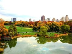The Great Lawn and Turtle Pond by Gigi Altarejos #FallFoliage #centralpark